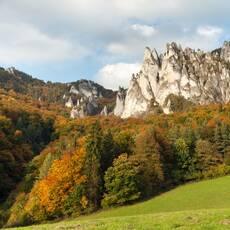 Súľovské skaly