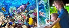 Morský svet