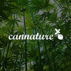 Cannature