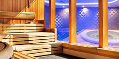 Sauna a wellness