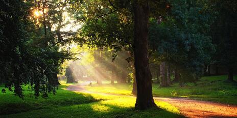Na prechádzke s deťmi: krásne parky v BA a okolí.