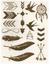 Dočasné metalické tetovanie | Vzor 003