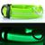 LED svietiaci obojok pre psíka | M | Zelená