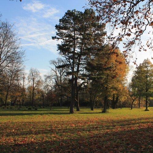 Anglický park Palárikovo