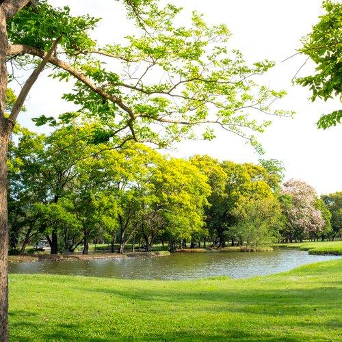 Mestský park v Trebišove