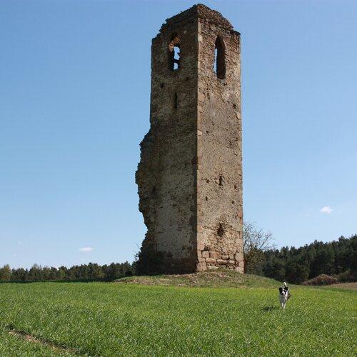 Zrúcanina kostola Miloj / Spišský Hrušov