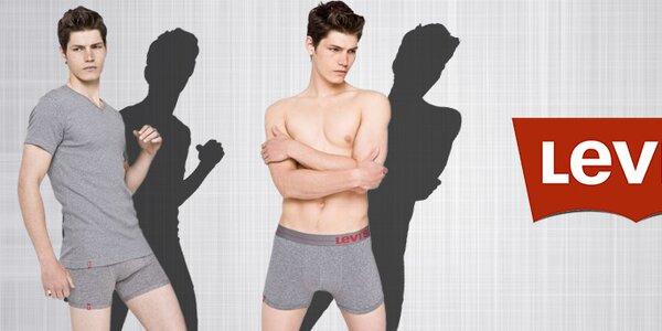 Pánska spodná bielizeň, ponožky a tričká Levi's