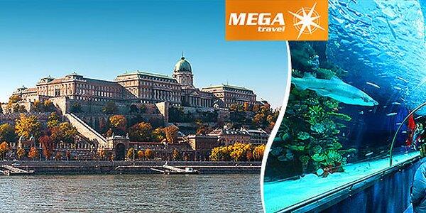 Budapešť , Tropicarium a ZOO v jeden deň!