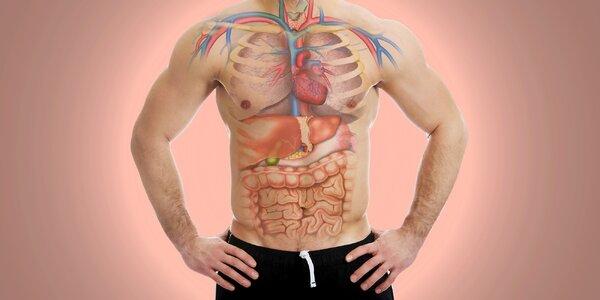Základná alebo hĺbková diagnostika vašich orgánov, srdca alebo potravinovej…