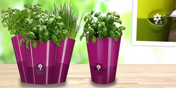 Kvetináč so samozavlažovacím systémom