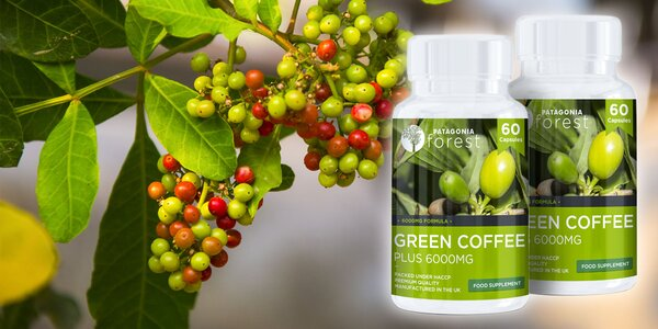 Zelená káva, najsilnejšia zelená káva na trhu