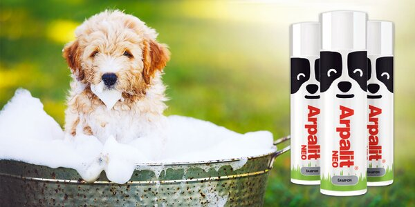Šampóny pre vaše zvieratká