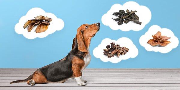 Zdravé pamlsky pre vášho psíka