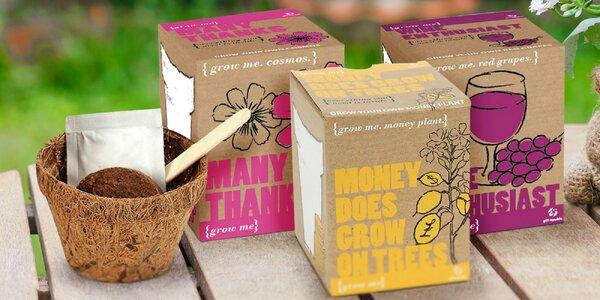 Grow me set na pestovanie papričiek, čaju alebo bazalky