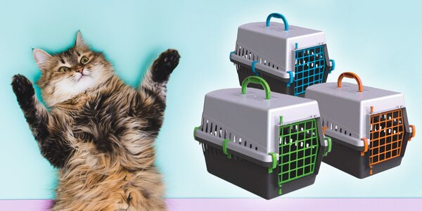 Plastová prepravka pre mačky