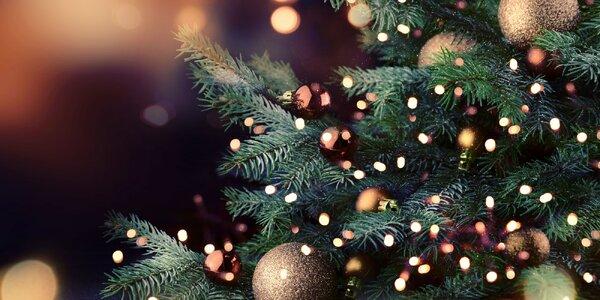 Vianočné LED svetielka: interiér i exteriér