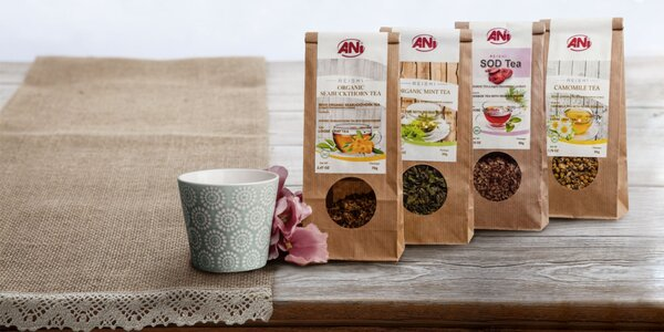 Vynikajúce BIO reishi čaje