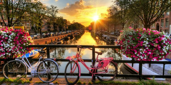 Amsterdam, výstava kvetov Keukenhof a Bruggy