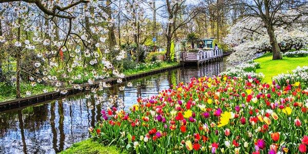 3 krásne dni v Amstredame aj s návštevou tulipánového parku Keukenhof
