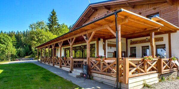 Wellness pobyt v horskom Hoteli Martiňák*** na hrebeni Beskýd