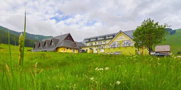 Pobyt s polpenziou a wellness v penzióne Dolinka