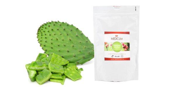 Účinný antioxidant Nopal Cactus v prášku