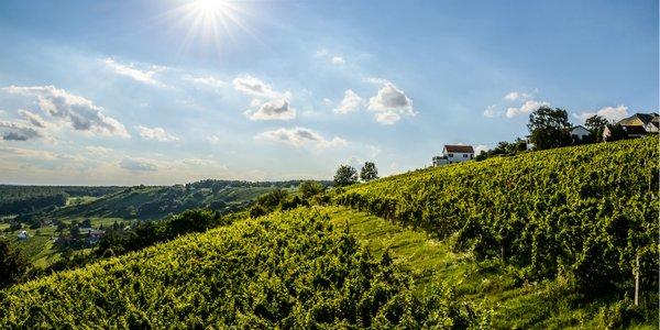 Ubytovanie v rakúskom Solens Land Guest House