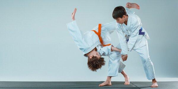 Mesačný tréning sebaobrany Aikidó