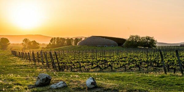 Zájazd do Maďarska: ochutnávka vín, zoo alebo oddych v kúpeľoch