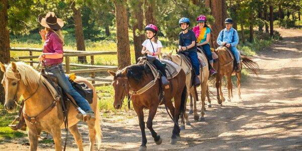 Super Farm tábor plný zvieratiek a celodennej zábavy neďaleko Ružomberku