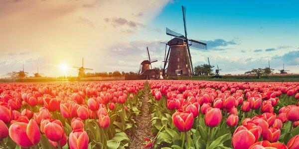Zájazd za najkrajším národným parkom Holandska a prehliadka Amsterdamu