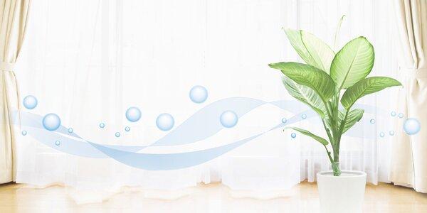Dezinfekcia domácnosti ozónom