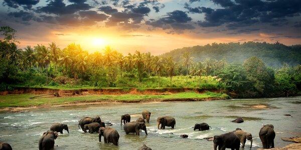 Spoznajte Srí Lanku, krajinu čajových plantáží, slonov a božskej prírody