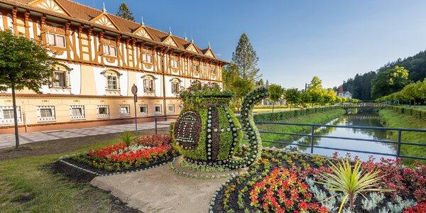 Pobyt v Luhačoviciach: wellness procedúry, polpenzia a veľa ďalších aktivít