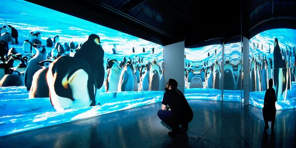 Vstup do nápaditej digitálnej galérie Poliankovo