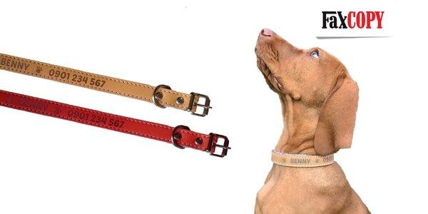 Kožený obojok pre psov s vlastným gravírovaním
