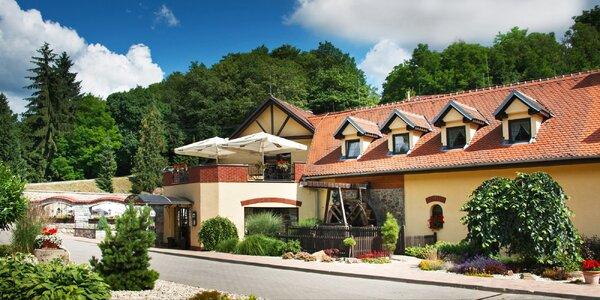 Pobyt v hoteli Nemojanský mlýn s polpenziou a vínom až pre 5 osôb