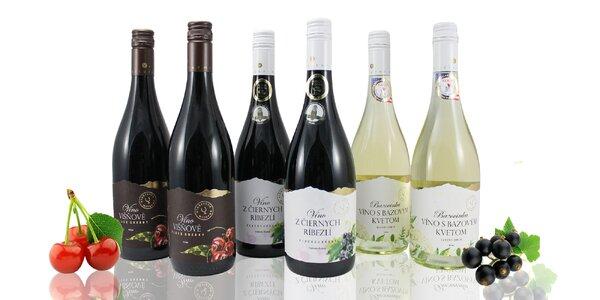 Ovocné vína – bazové, višňové a ríbezľové