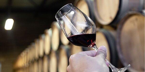 Ochutnávka mladých vín s občerstvením