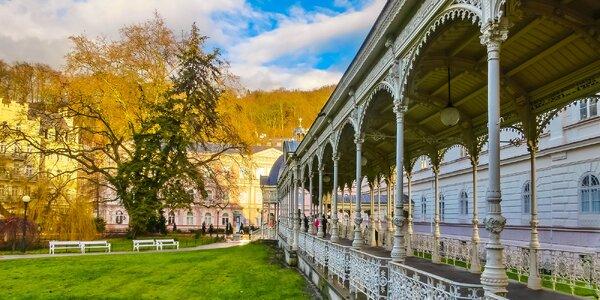 Wellness pobyt pri Karlových Varoch - chutná polpenzia a krásne hory