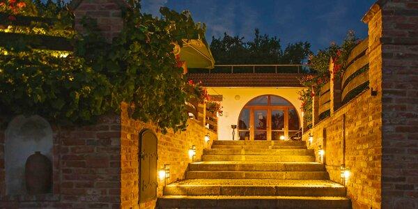 Raj milovníkov vína a južnej Moravy: degustácia vín s prehliadkou vinohradu