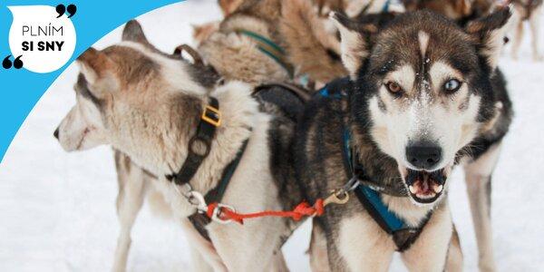 Sneh, psy a rýchlosť? Zistite, ako Tina vyskúšala PSIE ZÁPRAHY!