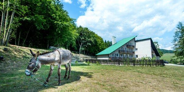 Pobyt neďaleko Bardejova - ničím nerušené miesto na okraji mesta