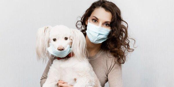 Koronavírus a domáci miláčikovia