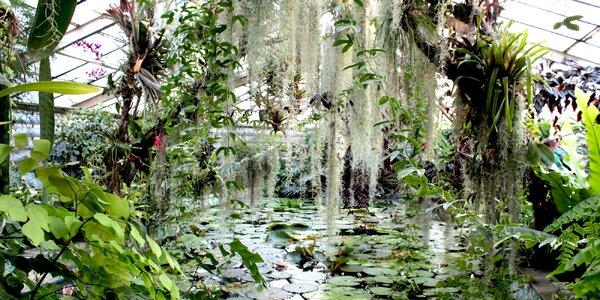 Najkrajšie slovenské botanické záhrady a arboréta