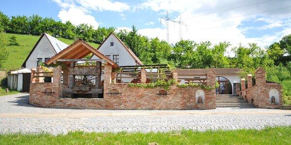 Raj milovníkov vína a južnej Moravy: pobyt pre celú rodinu v areáli vinárstva