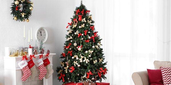 Jedľa kaukazská - živý a voňavý vianočný stromček