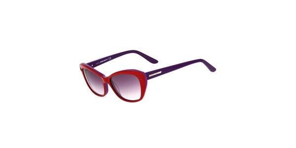 Dámske červeno-fialové mačacie slnečné okuliare Miss Sixty