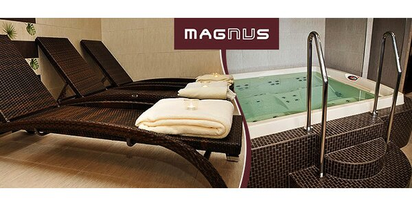 Vstup do wellness centra Magnus
