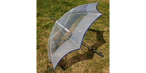 Dámsky transparentný dáždnik s šedým lemom Alvarez Romanelli